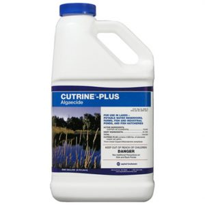 Cutrine Plus Algaecide 1-Gallon