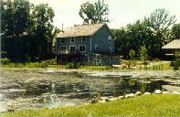 pond before lake management